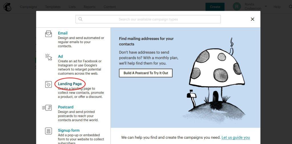 Select Mailchimp landing page